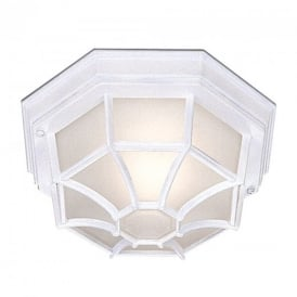 2942WH Outdoor Hexaganal White Flush Light