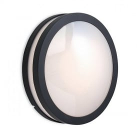 8354 Zenith Graphite Outdoor Wall Light with Opal Glass
