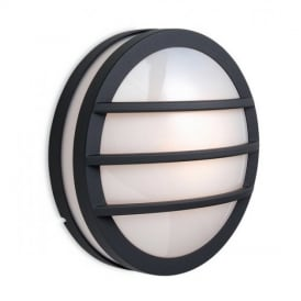 8355 Zenith Graphite Outdoor Wall Light with Opal Glass