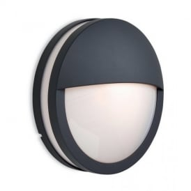 8356 Zenith Graphite Outdoor Wall Light with Opal Glass