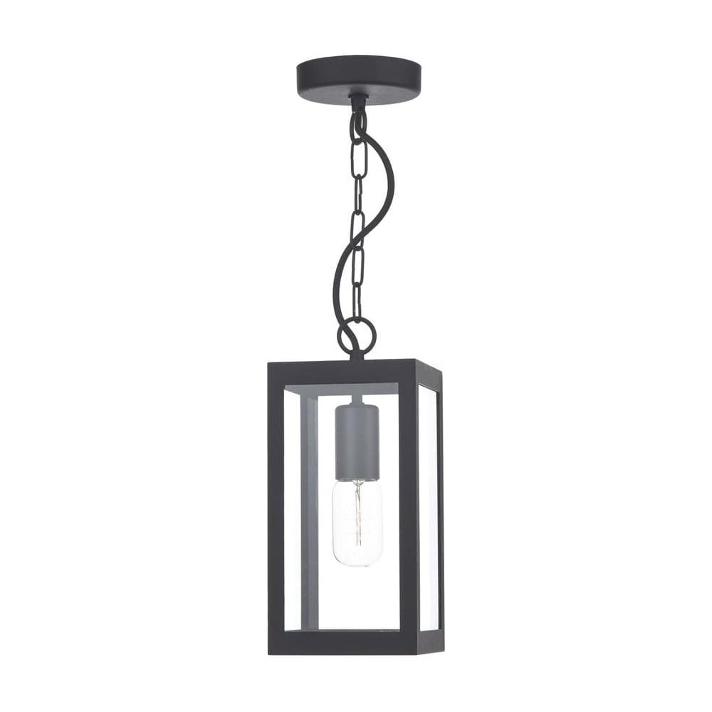 Elegant Lotus 1 Light In Black Ceiling Light With Clear Glass LOT0122