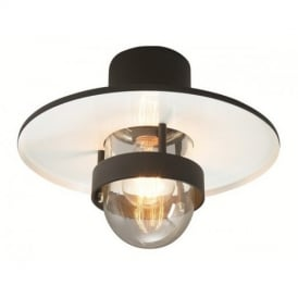 Bergen Ceiling Light with Opal Lens IP54