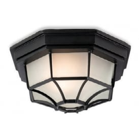 Panel Outdoor Traditional Flush Ceiling Light In Black Finish F609