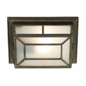 TRE5254 Trent Outdoor Wall Light With Black Gold Finish
